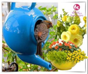 Ξεχωριστές διακοσμητικές προτάσεις για τον κήπο σας!